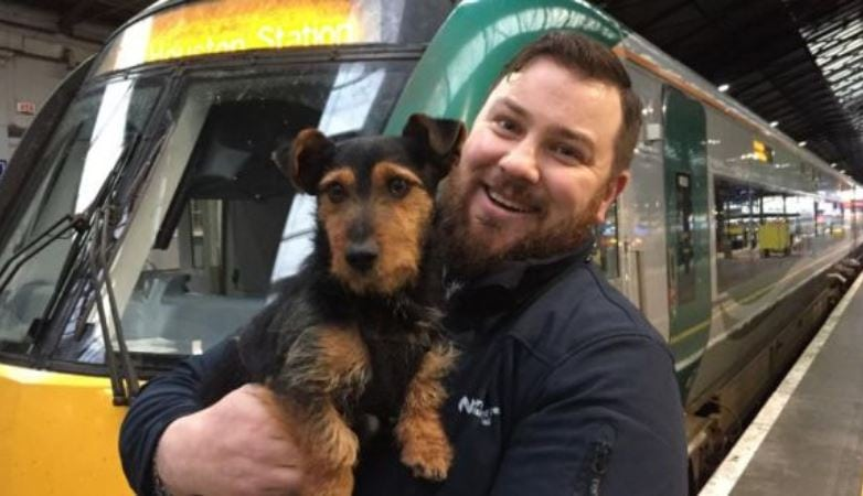 Lost dog who snuck onto train in Ireland reunited with family through social media