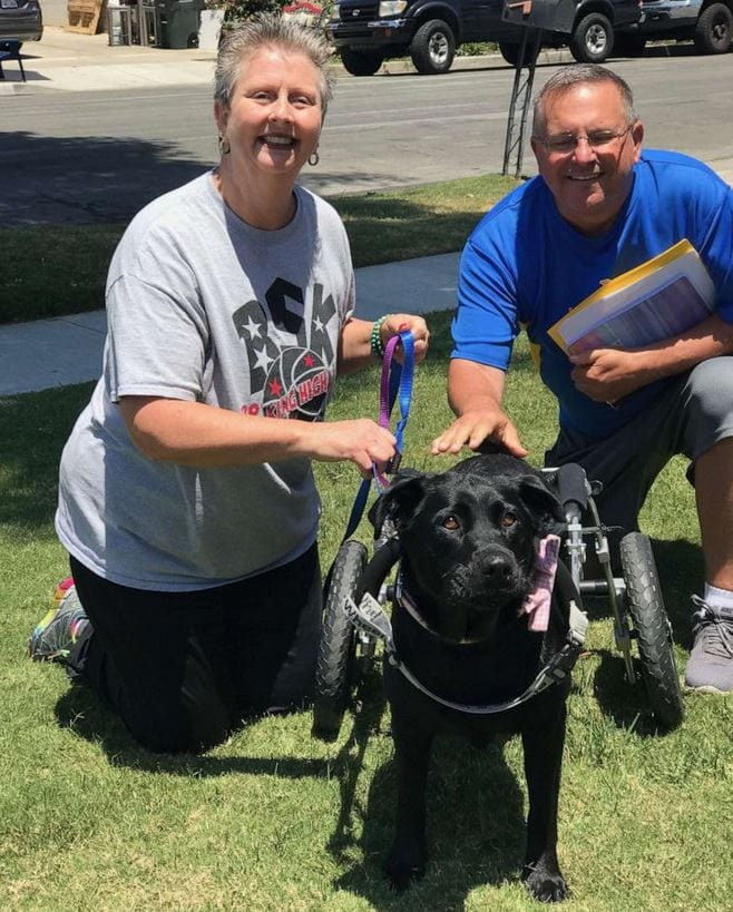 Maggie was adopted by Penny Yearsley on June 9, 2019. Yearsley and her family own a nonprofit called Bill's Special Kids, where they invite 130 children with special needs and their families to do fun activities.