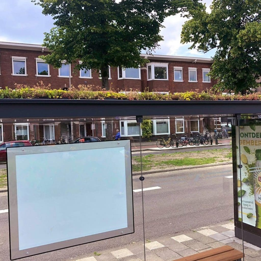 Holland has covered hundreds of bus stops with plants to welcome honeybees and promote clean air.