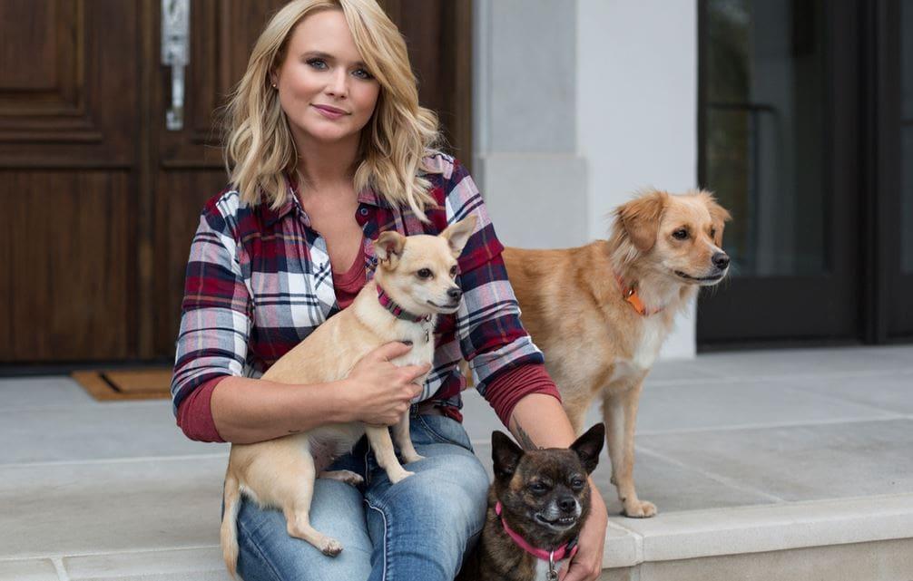 Animal shelter waives fee thanks to Miranda Lambert donation