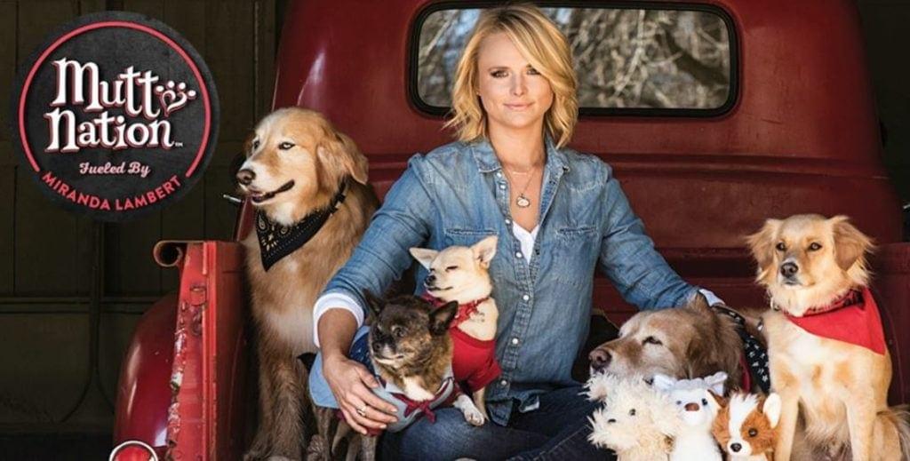 Animal shelter waives fee thanks to Miranda Lambert donation.