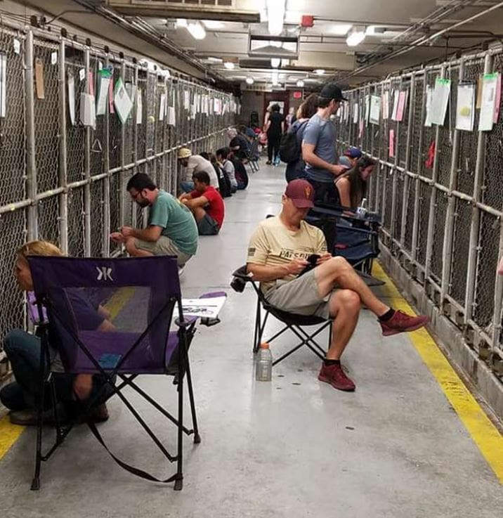 People Are Skipping 4th Of July Fireworks To Comfort Scared Shelter Dogs.