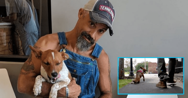 "Amputee veteran adopts puppy who is also missing a leg: ""It's impossible to not smile around him"". Source: Channel 5 Nashville"