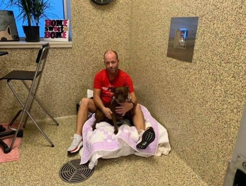 """Dog lover moves in with shelter dog to help her get adopted - """"I'm gonna stay until we find the perfect home""""."""