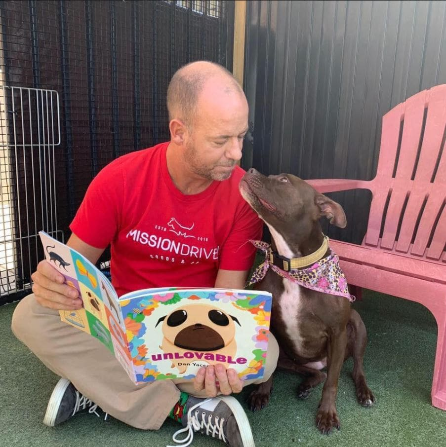 """Dog lover moves in with shelter dog to help her get adopted - """"I'm gonna stay until we find the perfect home"""". Source: KMBC"""