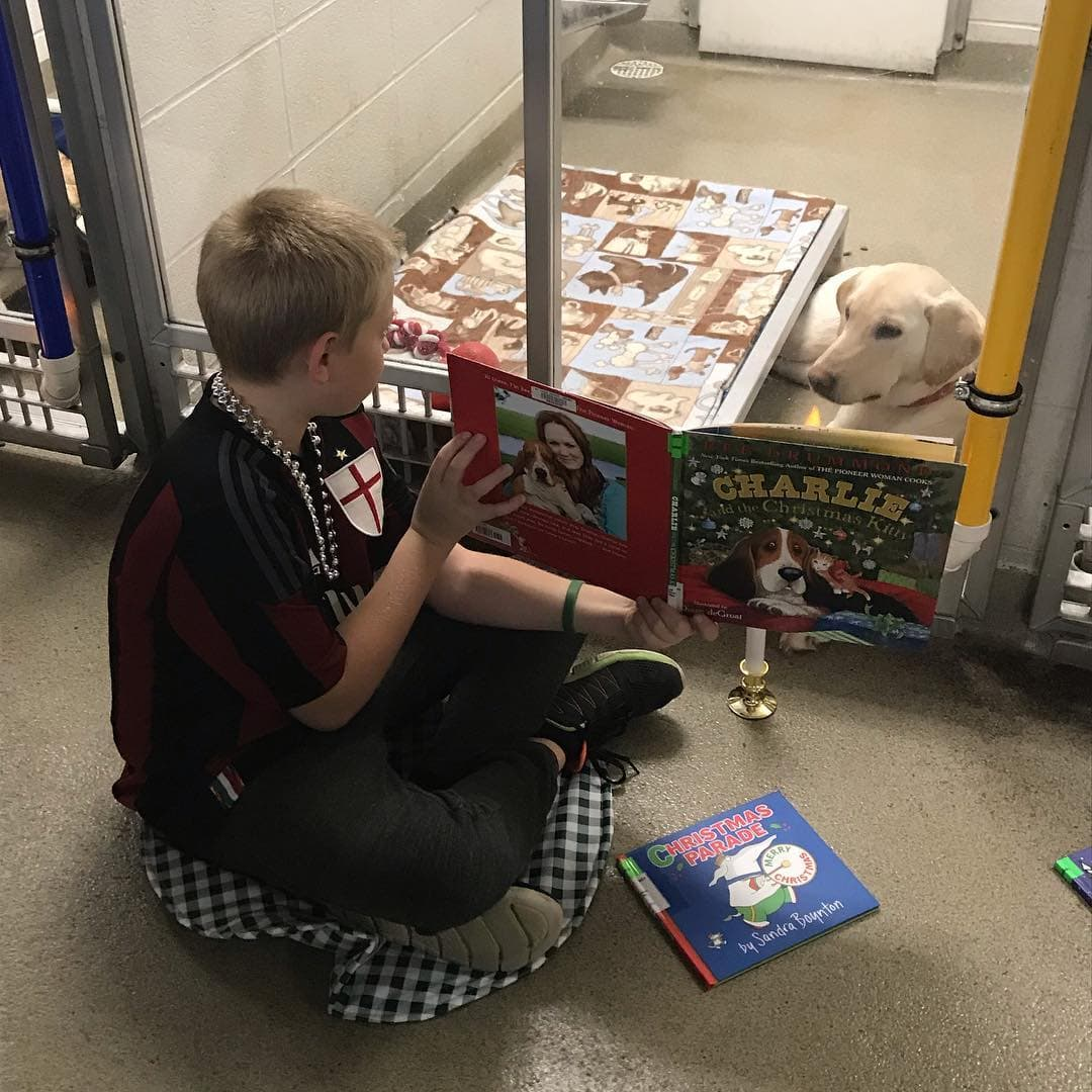 Kids bring holiday cheer and comfort to shelter animals with book reading and treats.