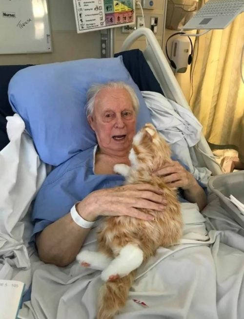 Dementia patient receives gift of lifelike, robotic cat that restored his sense of purpose making him calmer & happier.